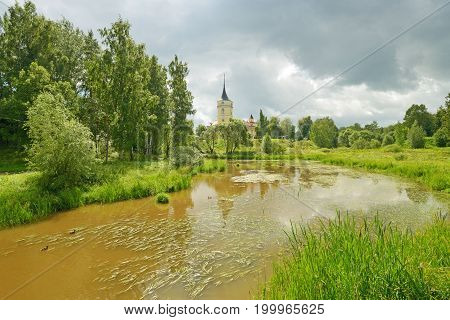 Young leaves on trees and green grass by the river beautify the natural landscape.