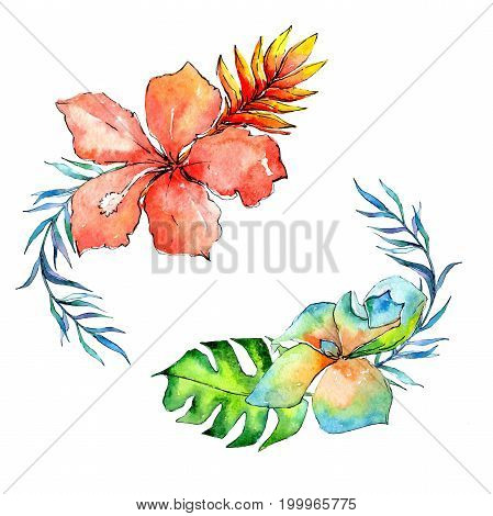 Tropical Hawaii leaves palm tree wreath  in a watercolor style. Aquarelle wild flower for background, texture, wrapper pattern, frame or border.