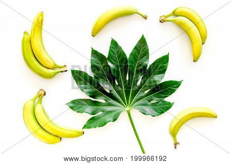 Tropical pattern with big leaf and bananas on white background top view.