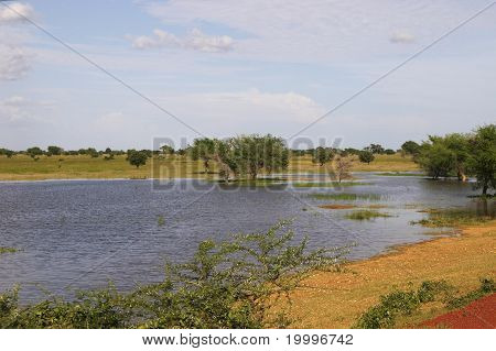 Swampland in Africa