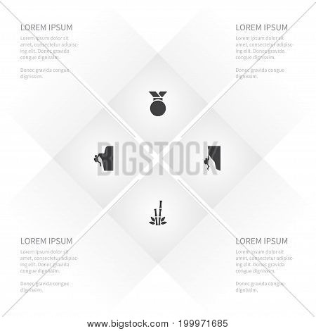 Icon Lifestyle Set Of Medallion, Cragsman, Sport And Other Vector Objects