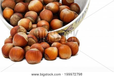 Scattered from a hazelnut bowl on a white background