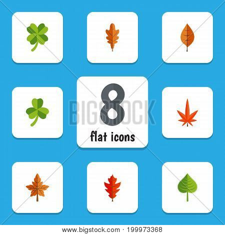 Flat Icon Maple Set Of Leaf, Linden, Aspen And Other Vector Objects
