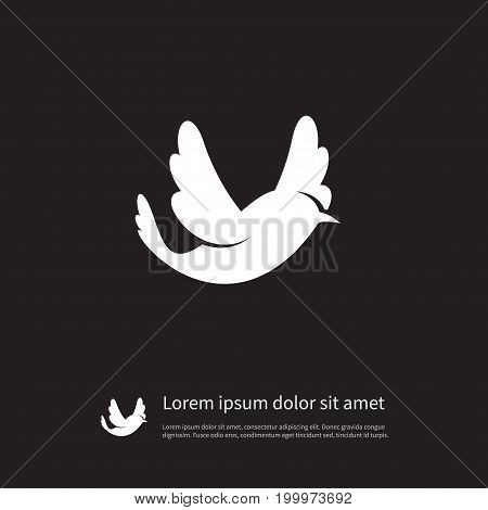 Bird Vector Element Can Be Used For Swallow, Martlet, Bird Design Concept.  Isolated Martlet Icon.