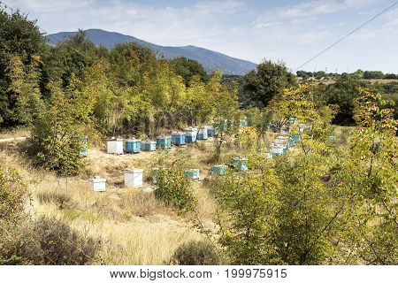 The mountain view, countryside and apiary on a sunny day