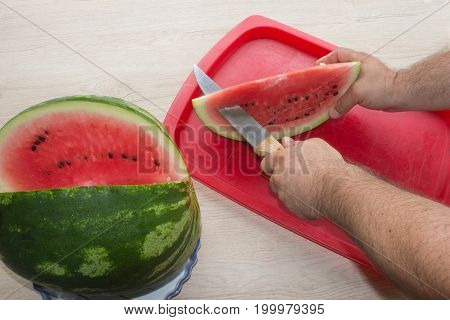 single watermelon cut on wood table at natural background. Close-up man hand cutting watermelon. He sliced fresh organic watermelon