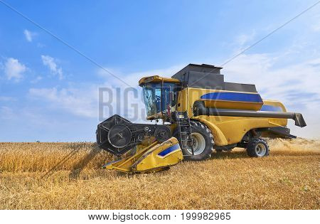 Giant yellow working wheat harvester combine machine on gold wheat fields in summer. August wheat harvesting in Russia, Europe. Rye corn harvester on gold wheat fields blue sky. Agricultural landscape