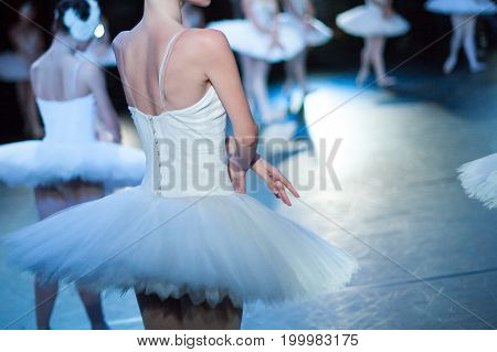 acting skills, dramatic character, theater concept. slim back of young female ballet dancer, dressed in snowy white dress with tutu, playing with her colleagues on the stage