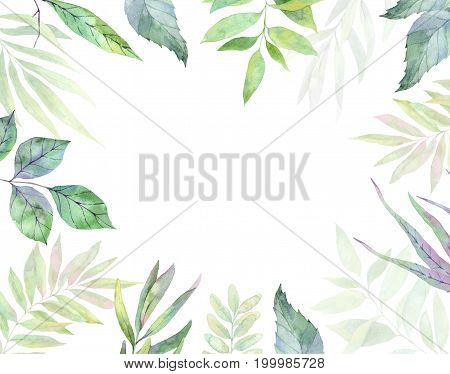 Hand Drawn Watercolor Illustration. Botanical Clipart. Frame With Green Leaves, Herbs And Branches.