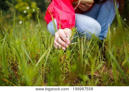 Photo of girl touching plant in woods by day