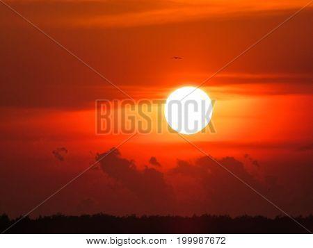 Sunset over the Boris Garden, Sofia, Bulgaria