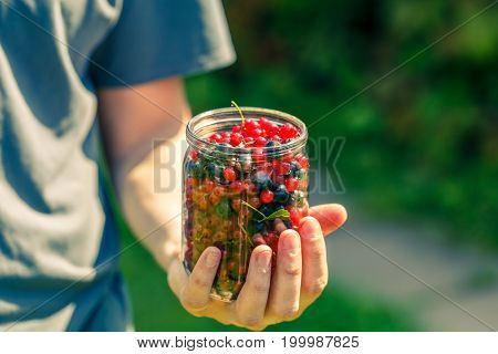 Man holding jar of red and black currants in palm of hand at garden
