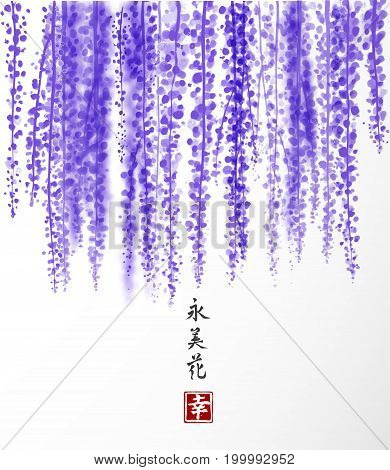 Wisteria hand drawn with ink on white background. Contains hieroglyph - happiness, eternity, beauty, flower. Traditional oriental ink painting sumi-e, u-sin, go-hua. Vector illustration.