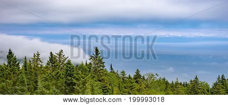 Wide Vibrant Skyscape With Layers Of Cloud And Fog Above Pine Forest