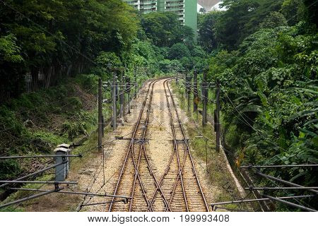 Double train line tracks with a junction lead off to a bend through tree lined embankments.