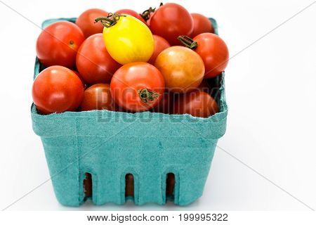 Ripe Heirloom Cherry Tomato Isolated On Black Back Ground. The pint of tricolor tomatoes are ready to be eaten.