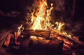 a big campfire in the night. Burning wood on fire poster