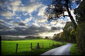 country road in English countryside in autumn poster