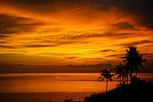 Magic tropical sunset by the ocean. Silhouettes of palm trees, bright yellow clouds, romantic beach on a tropical island during sunset. Travel and pleasure on the beach. poster