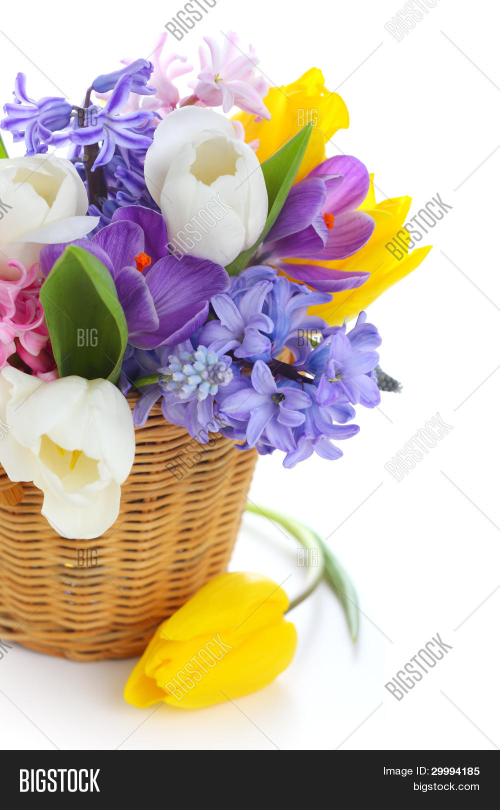 Bouquet Spring Flowers Image Photo Free Trial Bigstock