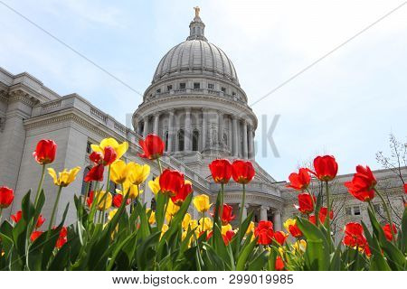 Wisconsin State Capitol Building Spring View With Flower Bed With Bright Tulips On A Foreground. Cit
