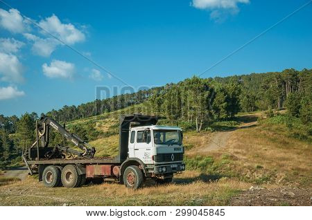 Truck Log Loader Next To Dirt Road On Terrain With Trees
