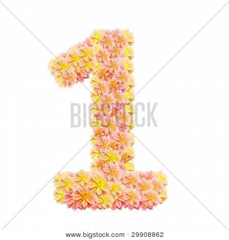 1,flower Alphabet Isolated On White