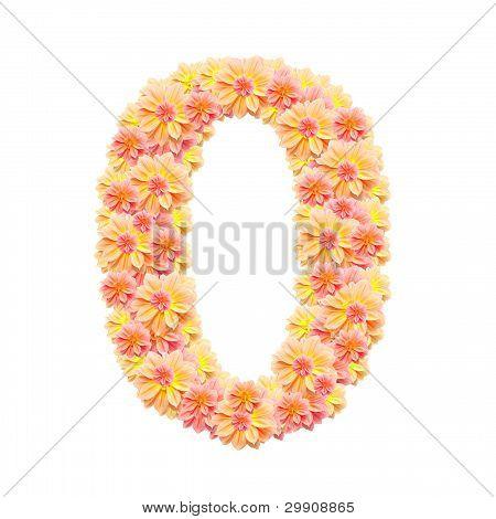 0,flower Alphabet Isolated On White