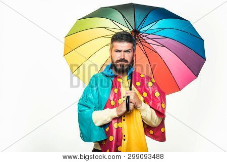 Brutal Bearded Man With Rainbow-colored Umbrella Isolated On White Background. Rain Weather. Autumn