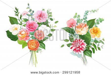Floral Vector Design Bouquets. Pink, Yellow, Fuchsia Rose, Orange Ranunculus, Garden Rose, Striped D