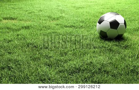 Football On The Green Grass Field 3d Rendering Wiht Copy Space