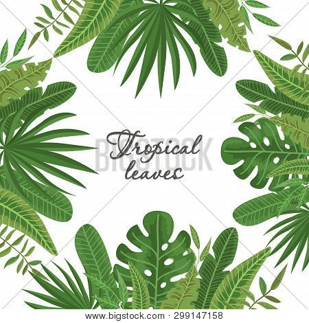 Bright Frame Of Colorful Tropical Leaves. Vector Illustration For Your Design