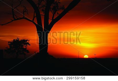 View Of Natural Beauty During Golden Hour
