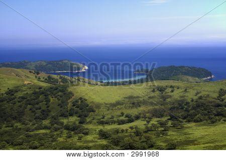 Littoral Landscape, Middle Bay