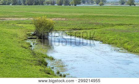 Biotope On The Elbe - National Park On The Elbe