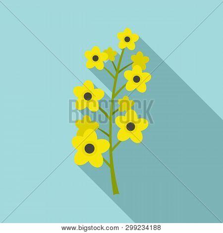 Rape Plant Icon. Flat Illustration Of Rape Plant Vector Icon For Web Design