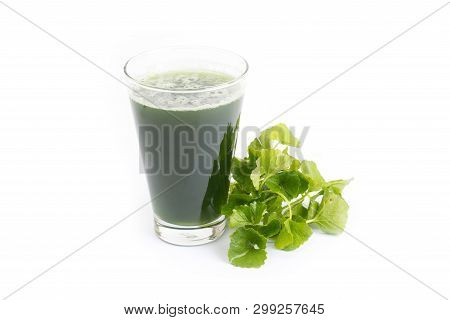 Gotu Kola Juice In Glass Isolated On White Background, Asiatic Pennywort, Centella Asiatica, Ayurved