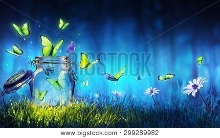 Freedom Concept - Magic Butterflies Flying Out Of The Jar On The Lawn
