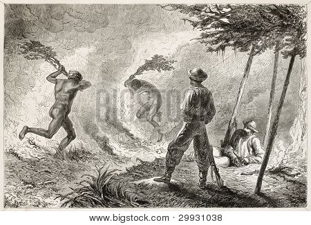 New Caledonian natives extinguishing fire in the savannah. Created by Neuville after Garnier, published on Le Tour Du Monde, Paris, 1867