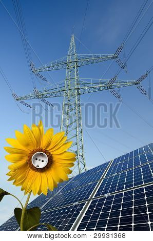 Solar Panels, Sunflower With Socket And Utility Pole