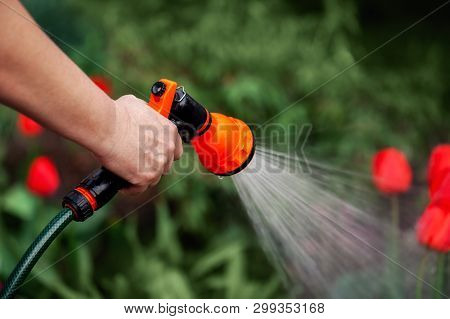 View Woman Hands Watering Plants From The Hose, Makes A Rain In The Garden. Gardener With Watering H