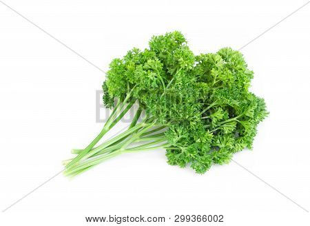 Parsley Vegetable Isolated On White Background, Food