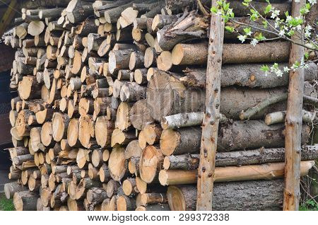 View Of Traditional Storage Timber , Southern Bohemia, Czech Republic