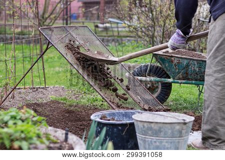 Adult Man Works On Garden. Man Shovel Soil Through Homemade Screen For Sorting On Stones And Clay. H