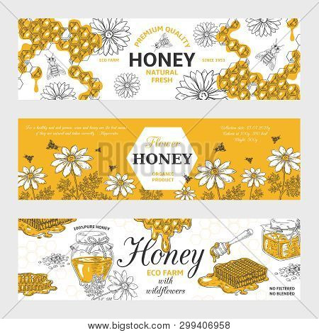 Honey Labels. Honeycomb And Bees Vintage Sketch Background, Hand Drawn Organic Food Retro Design. Ve