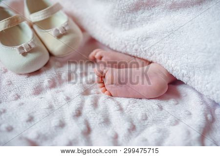 Bare Feet Of A Cute Newborn Baby In Warm White Blanket. Childhood. Small Bare Feet Of A Little Baby