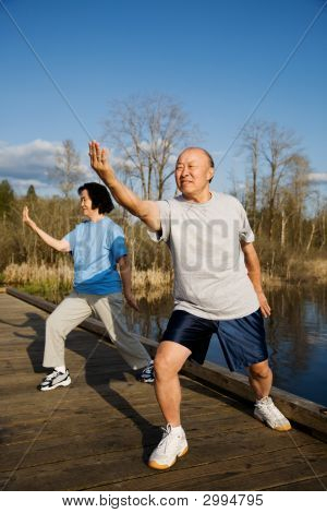 A shot of a senior couple practicing tai-chi exercise poster