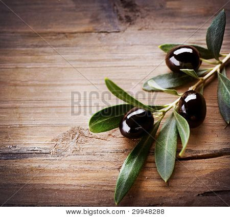 Olive Background
