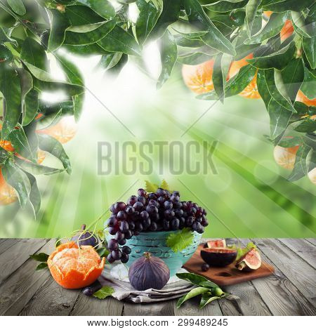 Mandarin  Fruit On Wooden Table And Green Leaves In Sunlight Garden. Natural Morning Background