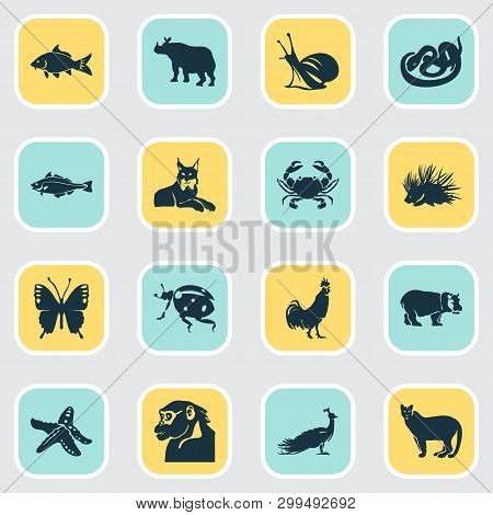 Fauna Icons Set With Porcupine, Carp, Lynx And Other Peafowl Elements. Isolated Vector Illustration